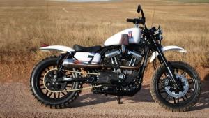 Custom Harley by Nicol Basson.
